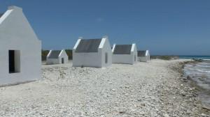 Bonaire4