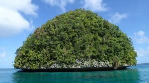 Palau08