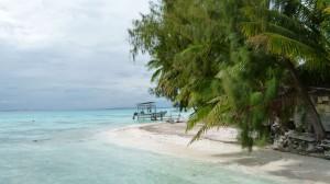 Polynesien55